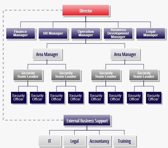 SFS Company Structure